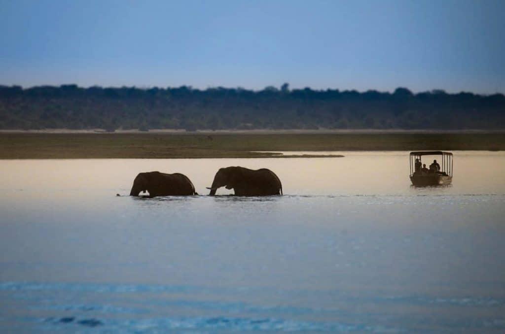 Saadani National Park 3 1160x676 1