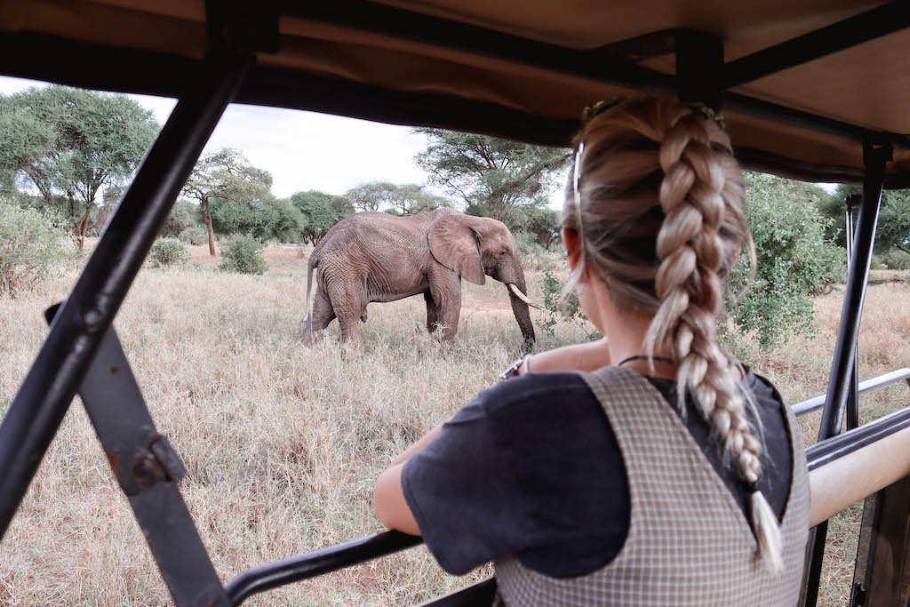 Tarangire-National-Park-Tanzania-All-You-Need-To-Know-6